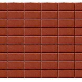 Прямоугольник красный 200х100